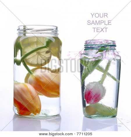 Two Glass Banks With Spring Tulips
