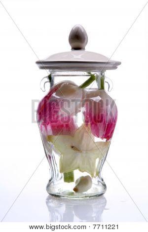 Spring Tulip In A Glass Vase