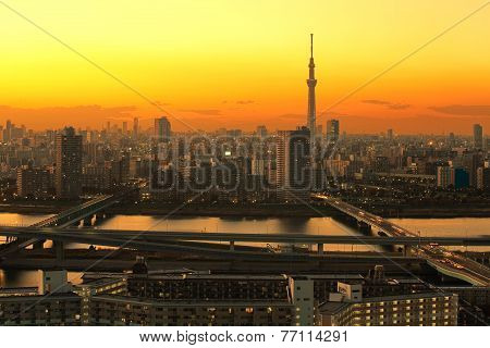 Tokyo sky tree at sunset