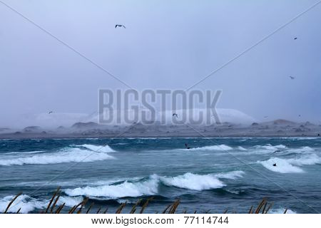 Winter Storm. Commander Islands