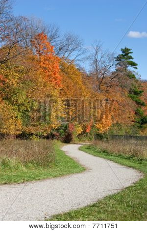Winding Path With Fall Colors
