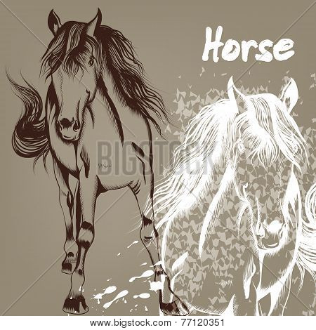 Hand Drawn Background With Horse