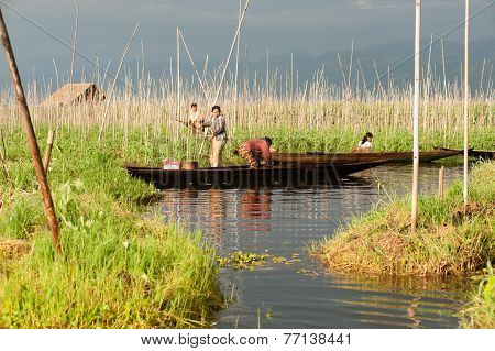 Employment In Inle Lake,Myanmar.