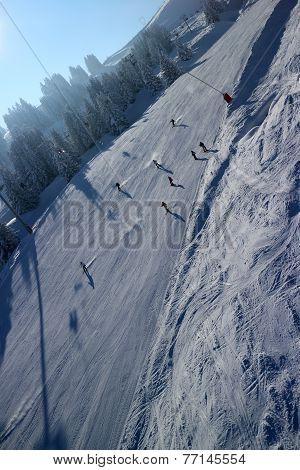 Gran Mastif 5k Marvel Green Ski Slope