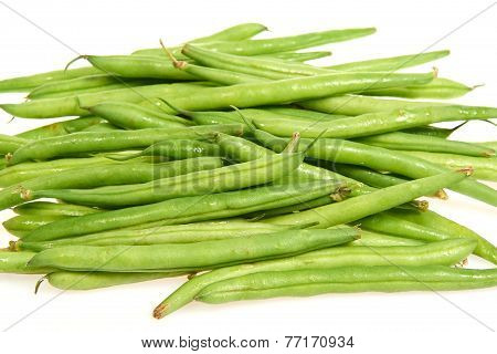 Common Bean (phaseolus Vulgaris)