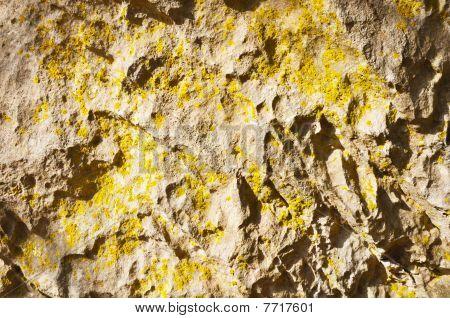 Jurassic calcareous wall