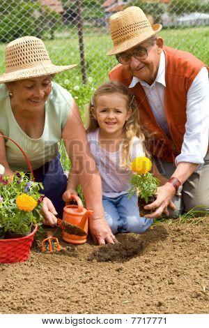 Grandparents Teaching Little Girl The Ways Of Gardening