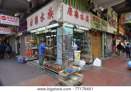 Customers Visit Fish Shop In Hong Kong