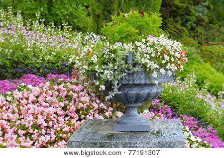 Beautiful Flower Bed