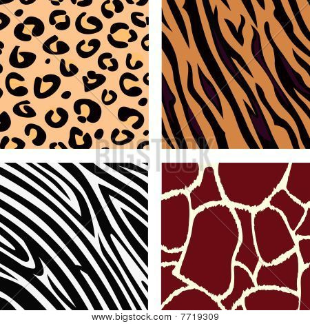 Animal pattern - tiger, zebra, giraffe, leopard