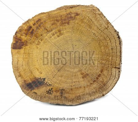 Wood Isolated