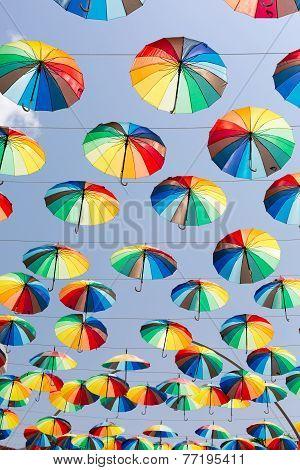 Rainbow Umbrellas