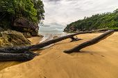 foto of tide  - Low tide on a secluded beach in Bako National Park West Sarawak Borneo Malaysia - JPG