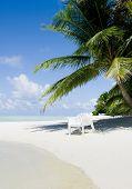 stock photo of kuramathi  - Beach chair under a palm tree on a hot afternoon - JPG