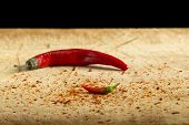 image of pepper  - Little red hot pepper and a big hot pepper on wood - JPG