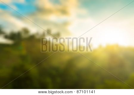 Jungle sunrise vector background
