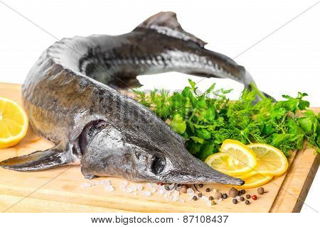 Fresh Raw Sturgeon Fish With Greens, Lemon, Different Peppers And Salt, Closeup