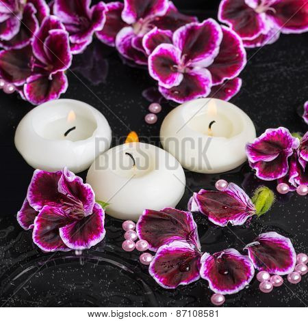 Beautiful Spa Still Life Of Geranium Flower And Candles In Ripple Reflection Water, Royal Pelargoniu