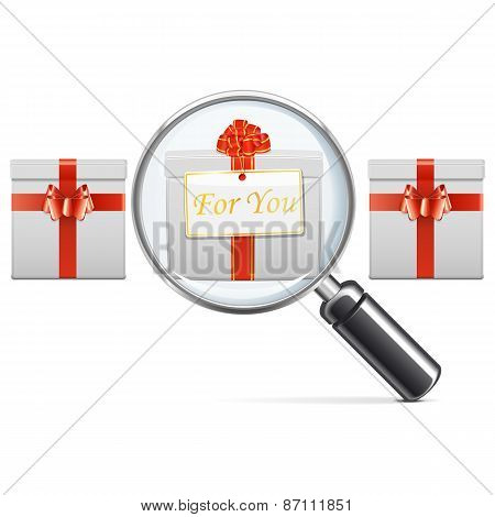 Vector Gift With Lens