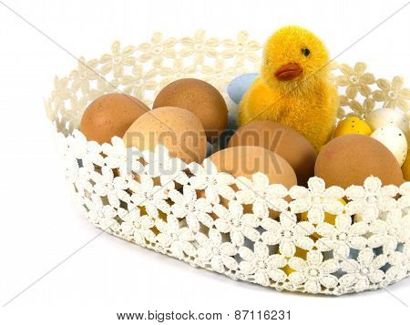 Boiled chicken eggs with a chick