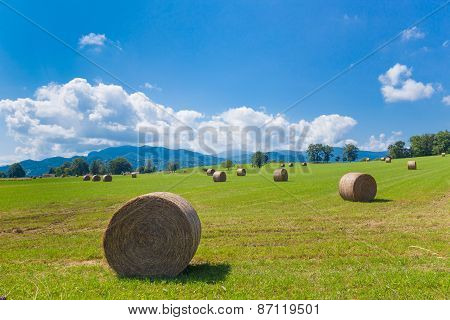 Round Bales Of Hay On Farmland In France