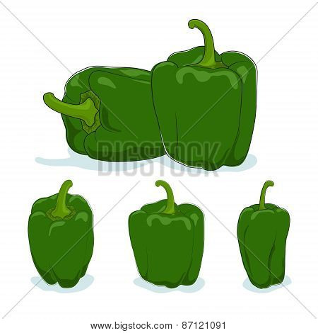 Green bell pepper,sweet pepper or capsicum