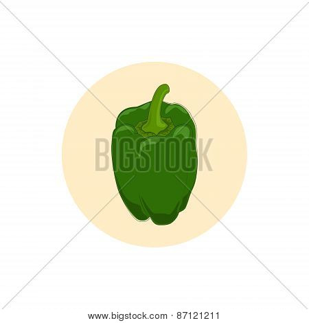 Icon green bell pepper,sweet pepper or capsicum