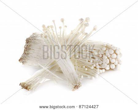 Enoki Mushroom, Golden Needle Mushroom On White