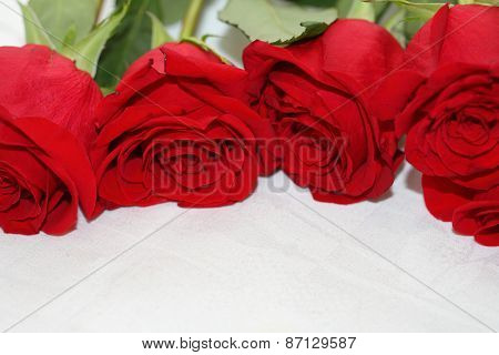 Bouquet Of Scarlet Roses