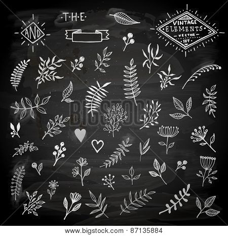 Set of Vintage Floral Hand-Sketched Elements. Flowers, Hearts, Calligraphic Elements, Labels, Logo, Catchwords, Wreaths and Bursting Rays for Retro Design. Chalkboard Style.