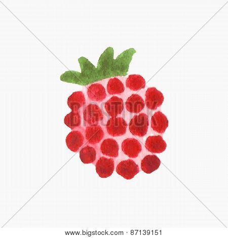 Hand-drawn raspberry. Real watercolor drawing. Vector illustration.