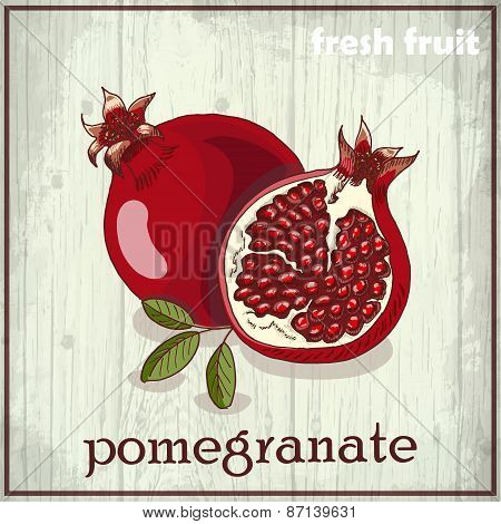 Hand Drawing Illustration Of Pomegranate. Fresh Fruit Sketch Background