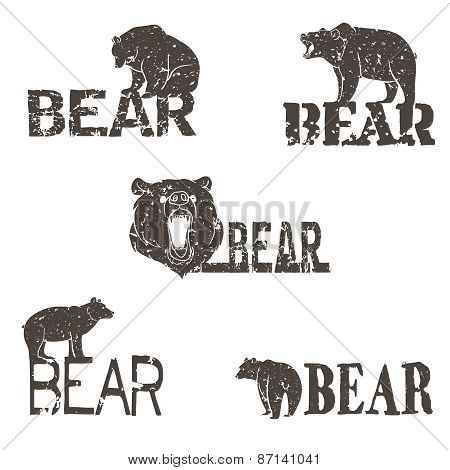 Collection of bear logotypes