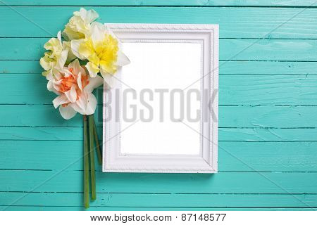 Background With Fresh Daffodils And Board
