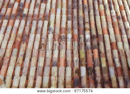 Colorful provence roof tile