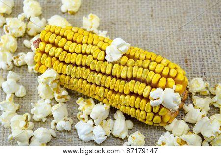 Corn Maize And Popcorns
