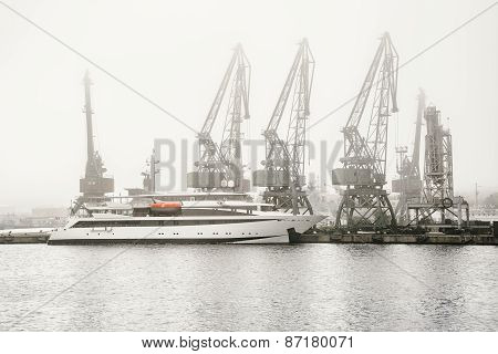 Fog In The Port