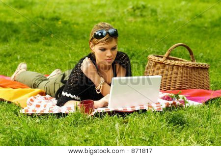 Busy Picnic