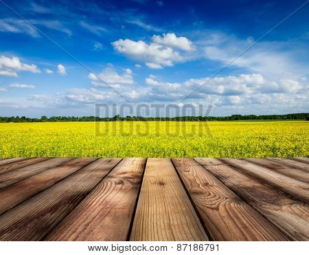 Spring summer background - yellow canola field with blue sky and wooden planks floor in front