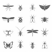 stock photo of insect  - Insects black icons set with bee bug fly butterfly isolated vector illustration - JPG