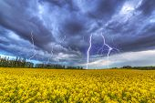 stock photo of flood-lights  - Summer thunderstorm over the rapeseed field in Poland - JPG