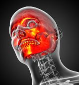 foto of mandible  - 3d render medical illustration of the human skull  - JPG