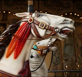 picture of carousel horse  - White horse in a carousel at the fair - JPG