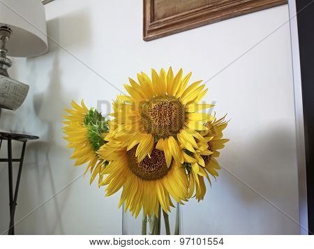 Large Bouquet Fresh Yellow Sunflowers