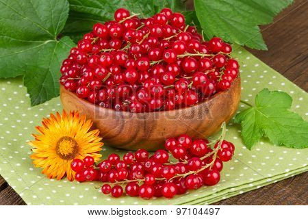 Redcurrant Berries on Green Polka Dots Napkin