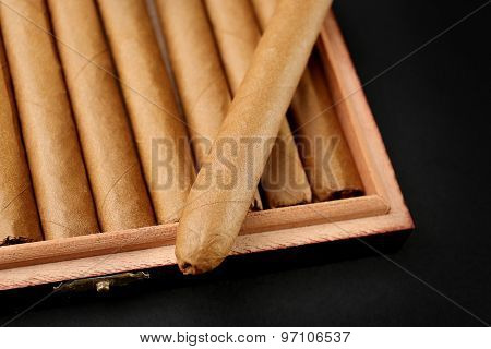Cigars in box on table, closeup