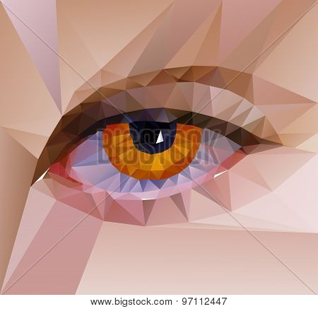 color eye design. Hi-tech concept
