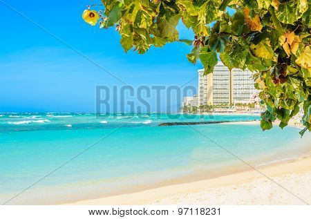 Beach and ocean scenic for vacations and summer getaways