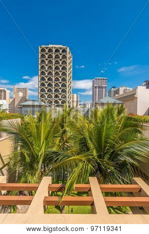 Palm trees and building tops in Honolulu, Hawaii, USA. Tropical city vacation background.
