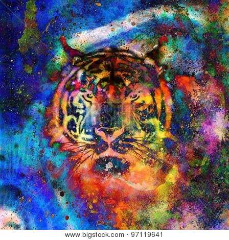 Tiger Collage On Color Abstract  Background,  Rust Structure, Wildlife Animals